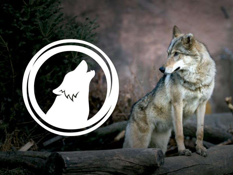 Nova logotipo aplicada na imagem
